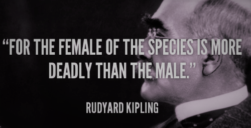 Rudyard Kipling, Britpop Tuesday, Top Britpop Music