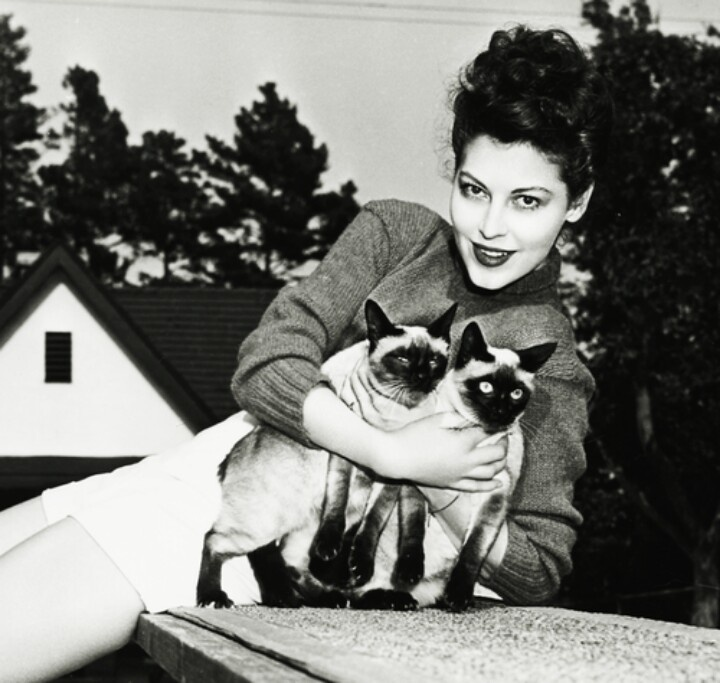 The Lovecats The Cure Ava Gardner Wordless Wednesday Lyriquediscorde
