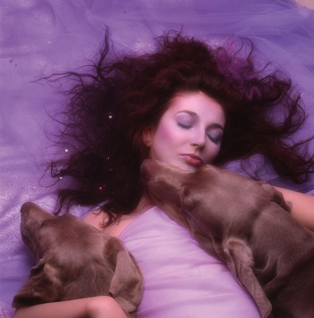 Kate Bush Hounds of Love SOTD