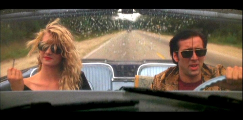 Wild At Heart Top 10 Movie 1